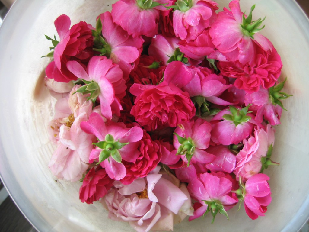 Rose Water benefits hydrosol