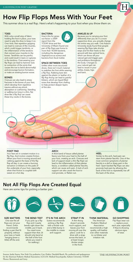 Flip Flops infographics