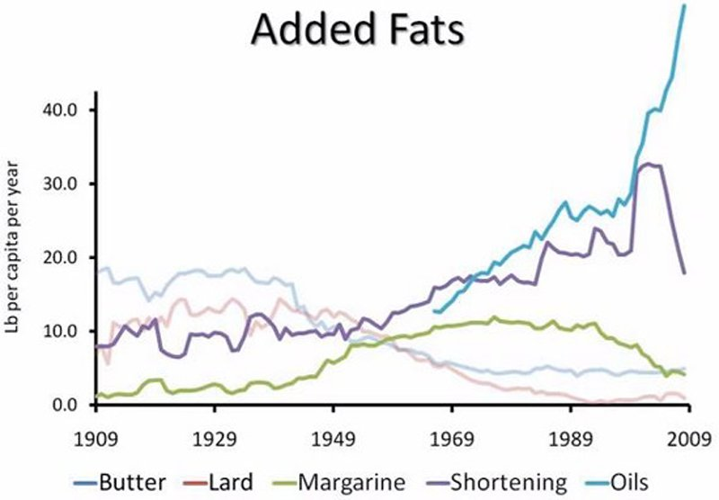 chart of fat consumption