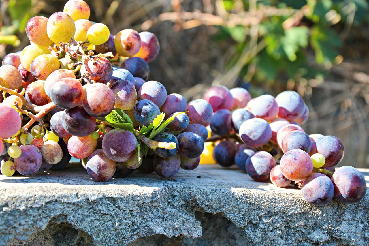 red grapes benefits, blood sugar, am coffee, amcoffee, health, fruits