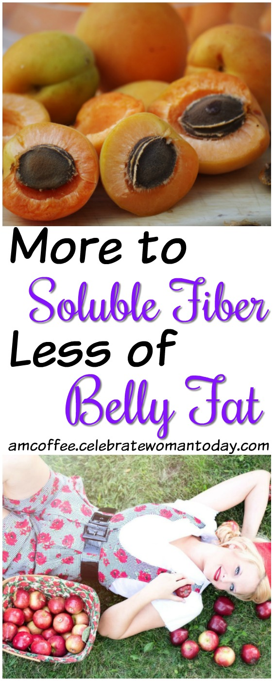 soluble fiber, belly fat, am coffee, amcoffee, weight loss tips